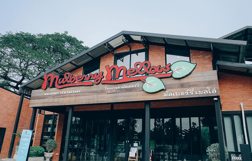 เดินมาทางหลังร้าน Mulberry Mellow